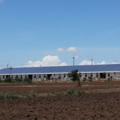The World Bank to Invest in Rooftop Solar in India