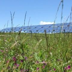 Island Community Solar