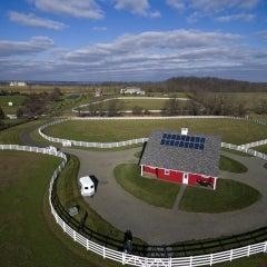 Arabian Horse Farm