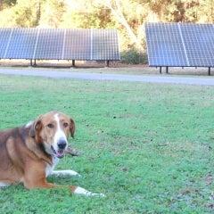 A1a Solar Contracting Inc Reviews A1a Solar Contracting