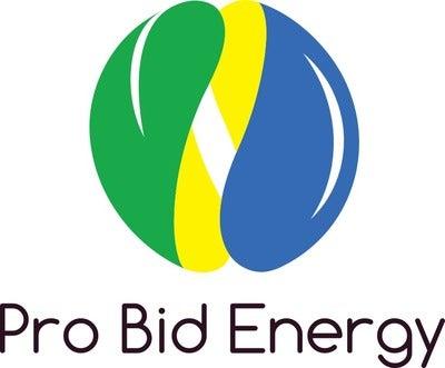 Pro Bid Energy