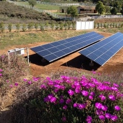 New 15-kW ground mount solar system in Jamul