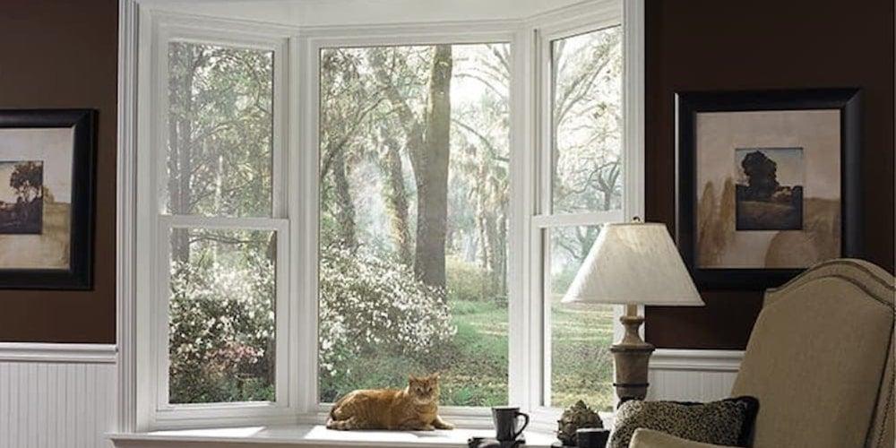 Cat sitting in the sun of a bay window