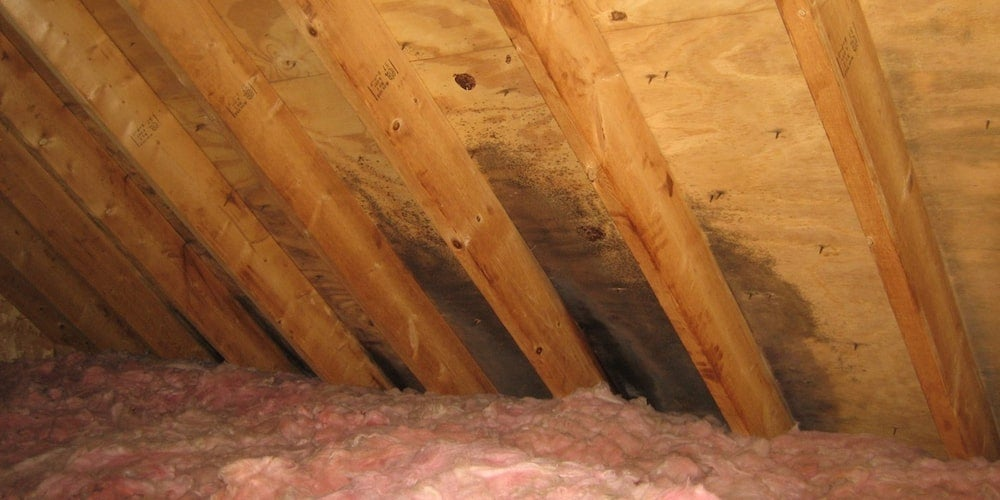 A leak seeping through an attic and into insulation