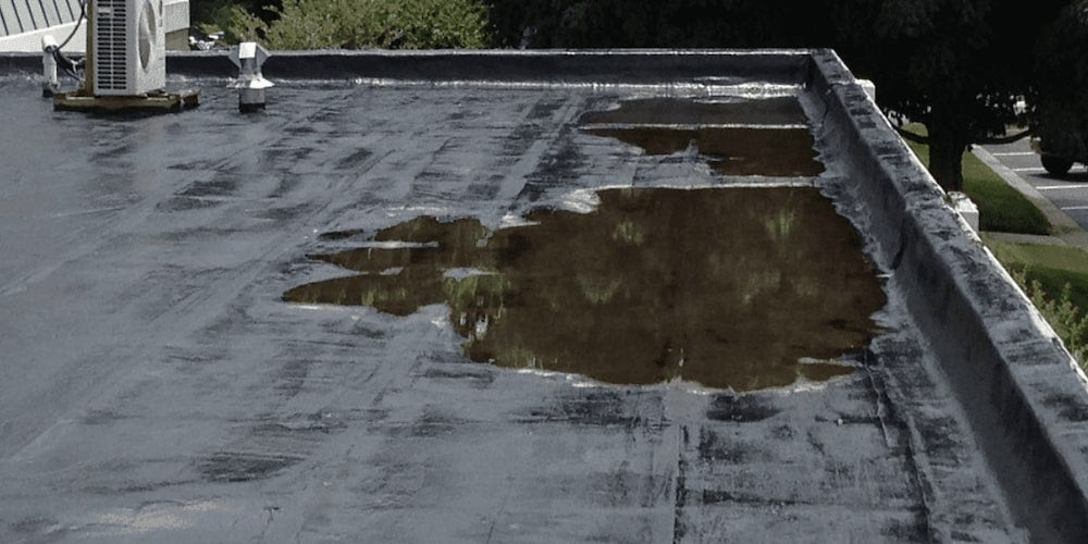 A collection of standing water, known as ponding, on a flat roof