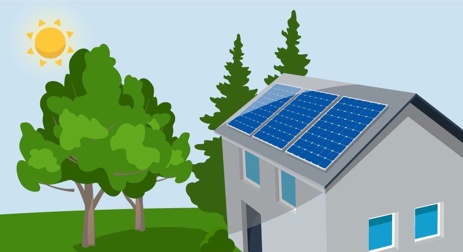 Trees cast shade on rooftop solar panels
