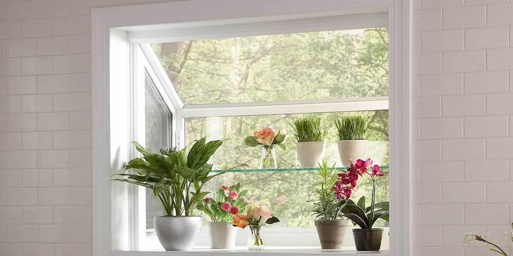Kitchen garden window with various plants inside