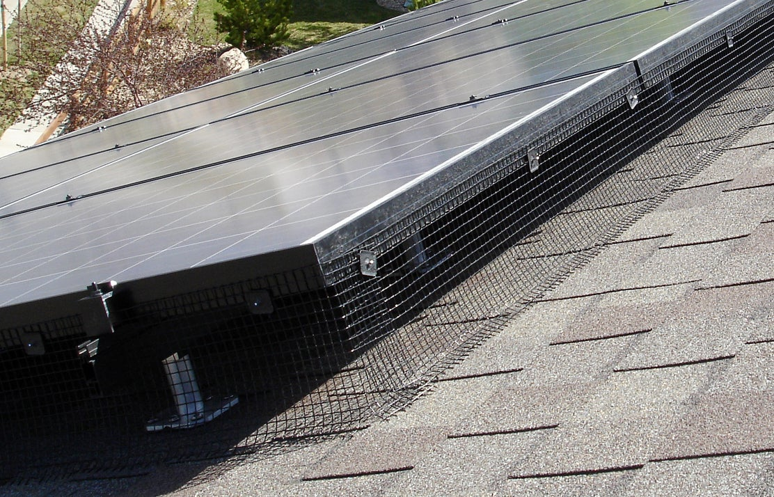 Rodents Wreak Havoc On Rooftop Solar