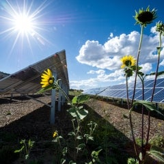 Biggest Solar Stories of 2013