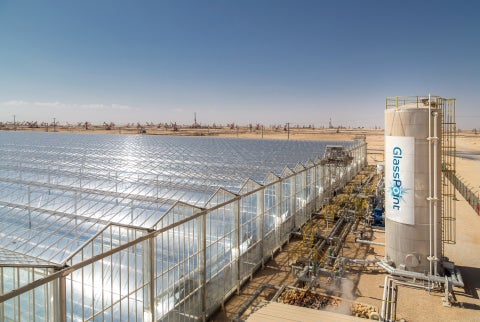 GlassPoint's Oman solar array. Courtesy GlassPoint