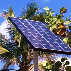 Floridians Gaining Confidence in On-Site Solar, Renewables