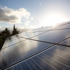 Vivint Solar Enters the Sunshine State