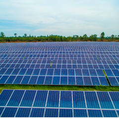 Germany's BayWa, Geenex Partner on 350MWs of Solar Projects in US Southeast…to Start!