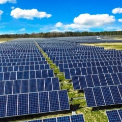 MIT, MA Orgs, Team up to Fund Massive Solar Farm In North Carolina