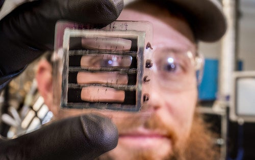 NREL scientist Matt Reese holds a substrate with the solar cells. Courtesy NREL
