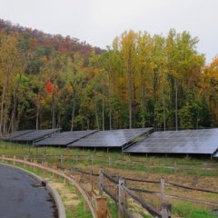 New York Solar Grows Nearly 800% Since 2011