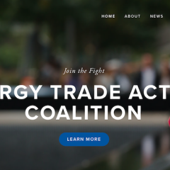Conservative Groups Form Coalition to Fight Suniva Solar Panel Trade Case