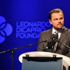 Leonardo DiCaprio Org Gives $20M to Environmental Causes, Including Solar