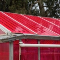 UCSC Uses Greenhouses to Generate Electricity While Growing Crops