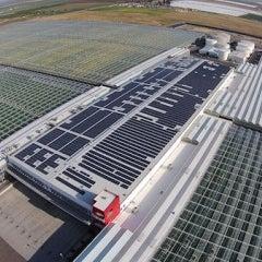 Reviews of top solar companies and current solar deals in Flossmoor