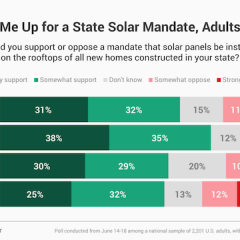 More Than Half of US Adults Interested in Solar, Even More Support Solar Mandates
