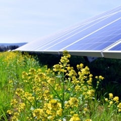 SolarReviews Weekly News: Homeowners Turn to Solar Loans, California Cuts Emissions