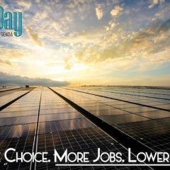 South Carolina Clean Energy Advocates Launch Into 2019 With 100 Day Solar Campaign